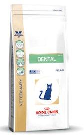 Dental dieet kat