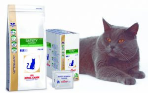 royal canin satiety support dieet kat