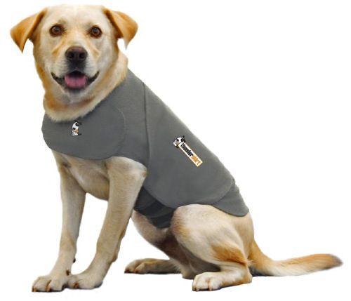 hond met thundershirt